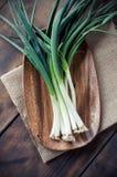 Cebolla de la primavera Imagen de archivo libre de regalías