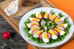 Cebolla de la primavera, huevos, ensalada del rábano, cierre para arriba Fotografía de archivo