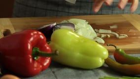 Cebolla del corte de la mujer y pimienta roja y cocinar el quesadilla de la patata dulce almacen de video