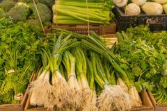 Cebolla e hierbas de la primavera en el mercado de los granjeros Foto de archivo