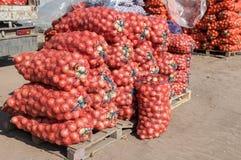 Cebolla fresca para la venta en el mercado agrícola Imagen de archivo