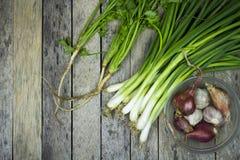 Cebolla galés, cebolla, ajo y coriandro en el tablón de madera Fotografía de archivo