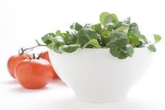 Cebolla natural fresca de la lechuga del tomate del tazón de fuente de ensalada fotos de archivo