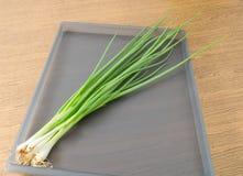 Cebolla o cebolleta de la primavera en una bandeja Fotografía de archivo