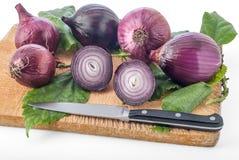 Cebolla púrpura Fotos de archivo