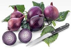 Cebolla púrpura y cuchillo de cocina Fotos de archivo