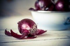 Cebolla roja Foto de archivo libre de regalías