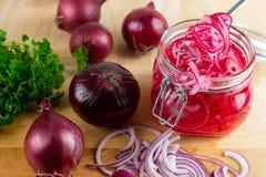 Cebolla roja conservada en vinagre foto de archivo libre de regalías