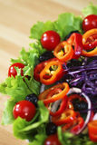 Cebolla roja de la pimienta del tomate y ensalada de col verdes olivas Fotografía de archivo libre de regalías