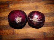 Cebolla vegetal púrpura brillante Foto de archivo