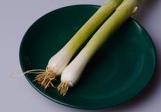 Cebolla verde Fotos de archivo libres de regalías