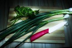 Cebolla verde Imagen de archivo