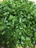 Cebolla verde del corte fresco Imágenes de archivo libres de regalías
