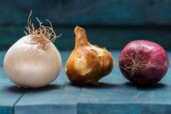 Cebolla y ajo en fondo de madera gasolina-coloreado fotos de archivo