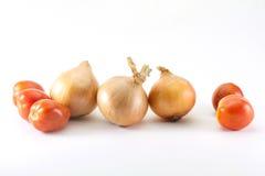 Cebolla y tomate Fotografía de archivo