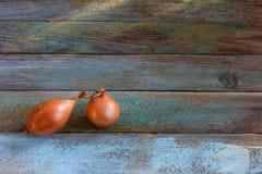 cebollas Imagen de archivo libre de regalías