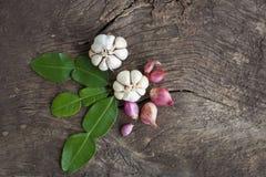 Cebollas, ajo, hojas de la cal del cafre Foto de archivo libre de regalías