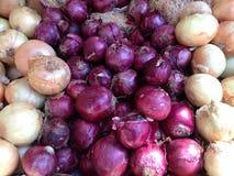 Cebollas amarillas y púrpuras Fotografía de archivo