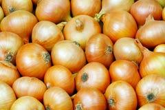 Cebollas. Antecedentes. foto de archivo