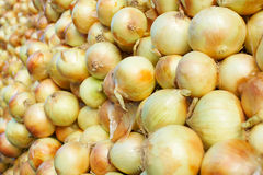 Cebollas b del amarillo del mercado de los granjeros Fotografía de archivo libre de regalías