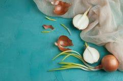 Cebollas brotadas en fondo de la turquesa Imágenes de archivo libres de regalías