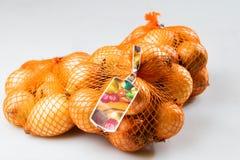 Cebollas clasificadas y embaladas Fotos de archivo
