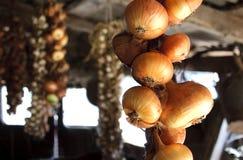 Cebollas colgantes de Driing bajo el pabellón Imagenes de archivo