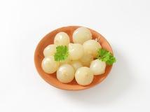 Cebollas conservadas en vinagre foto de archivo