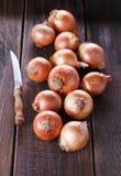 Cebollas de Brown en un fondo de madera oscuro rústico Fotografía de archivo