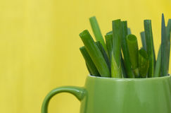 Cebollas de la hierba en taza del verde de n Imagenes de archivo