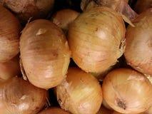 Cebollas de Vidalia imágenes de archivo libres de regalías