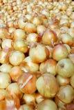 Cebollas del amarillo del mercado de los granjeros Foto de archivo libre de regalías