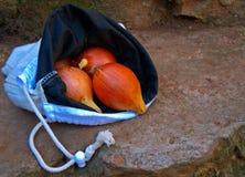 Cebollas en bolso Imagen de archivo libre de regalías