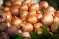 Cebollas en el mercado Imágenes de archivo libres de regalías