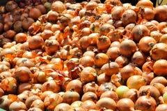 Cebollas en el mercado imagen de archivo libre de regalías