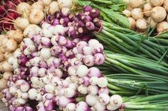 Cebollas en mercado de los granjeros Imagen de archivo