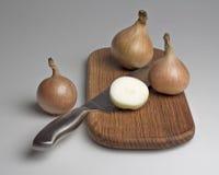 Cebollas en una tarjeta de la cocina. Fotos de archivo
