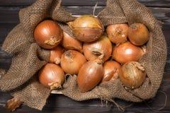 Cebollas rústicas Foto de archivo libre de regalías