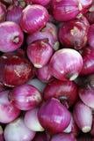 Cebollas rojas Fotos de archivo libres de regalías