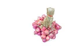 Cebollas rojas aisladas Imagen de archivo