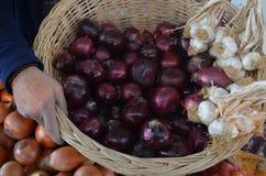 Cebollas rojas en cesta con ajo en el pavo de Antalya del bazar Foto de archivo libre de regalías