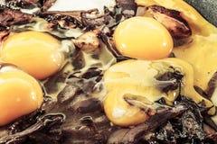 Cebollas rojas y huevos del pollo imagenes de archivo