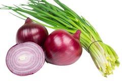 Cebollas rojas y verdes Imagen de archivo libre de regalías