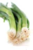 Cebollas verdes Fotografía de archivo