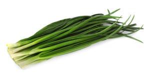 Cebollas verdes Imagen de archivo