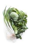 Cebollas verdes, cilantro, pepino y col. Imagenes de archivo