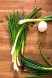 Cebollas y aceitunas de la primavera Fotografía de archivo libre de regalías