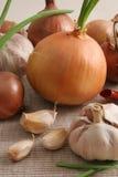 Cebollas y ajo. Imagen de archivo