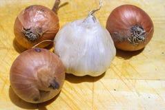 Cebollas y ajo Fotos de archivo