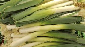 Cebolleta natuurlijke groente van de de lenteui Royalty-vrije Stock Foto